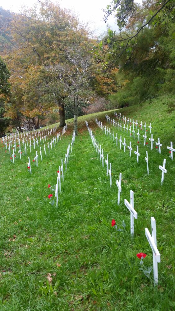 Armistice Day White Crosses to remember men and women from the Wellington region who died in WW1, Botanic Garden, Wellington, 2018